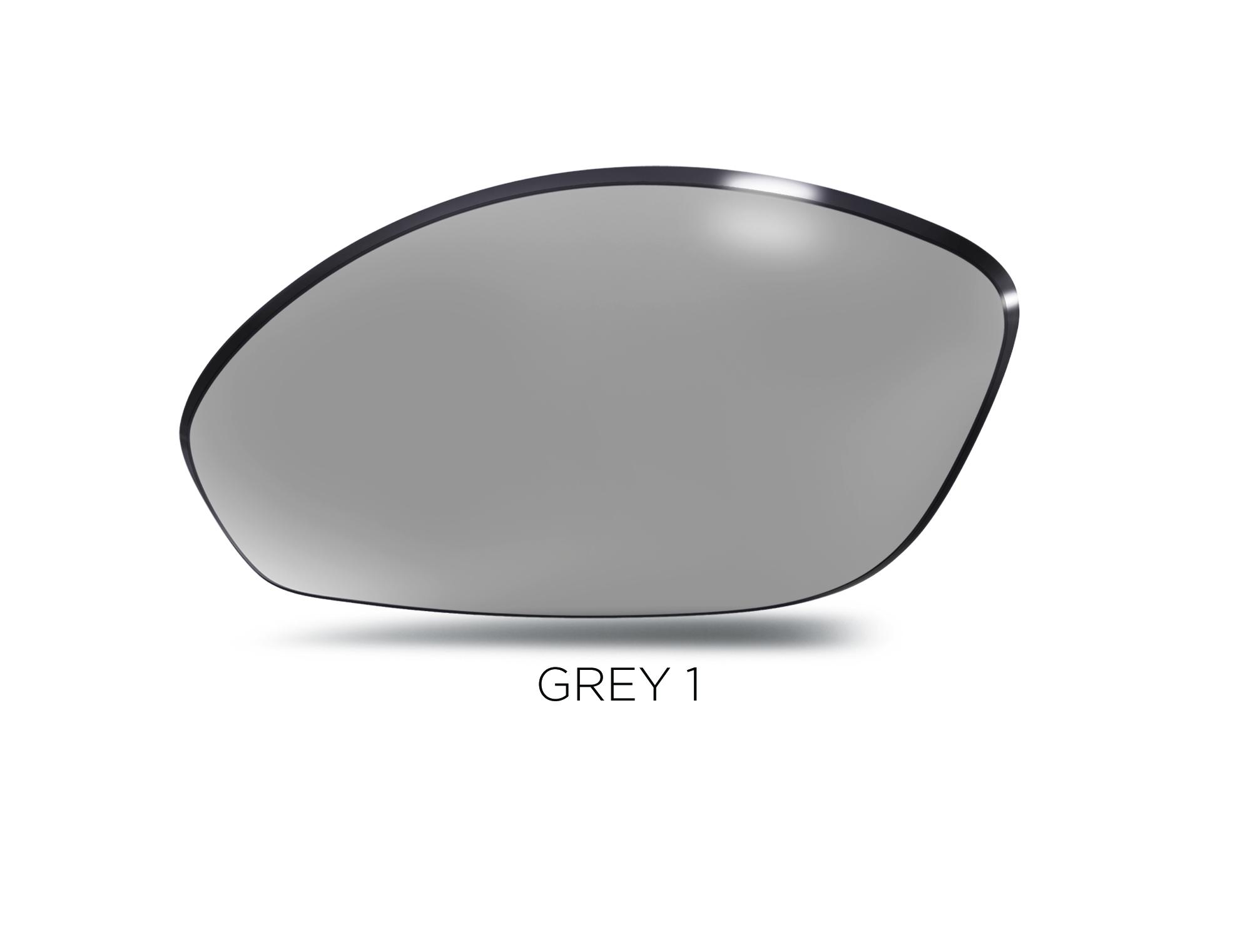 Gray-1_lens_TEMP